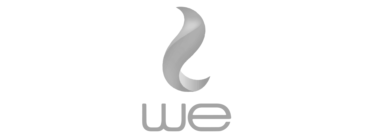 WE Telecom Egypt